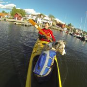 Hundekajakken Nansen