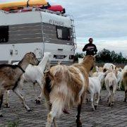 På tur gjennom Øst-Europa med kajakk på taket